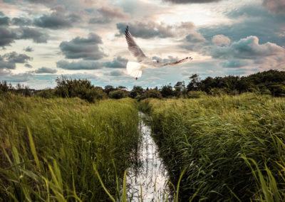 Landschaftsfotografie Nordfriesland